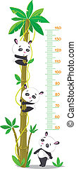 Meter wall with palm tree and three funny pandas - Meter...