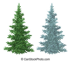 Christmas green and blue spruce fir trees - Green and blue...