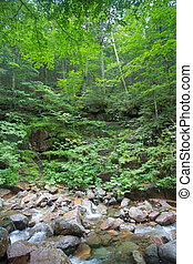Franconia Notch NH - Beautiful cascading water over rocks at...