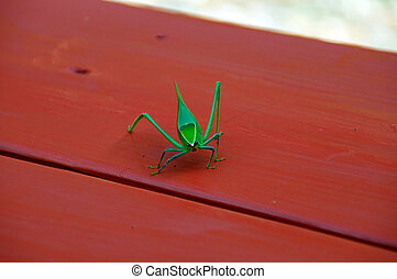 katydid looking at viewer - A large green katydid...