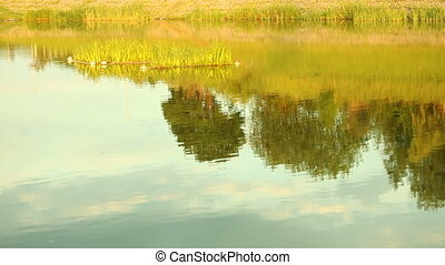 Natural landscape. Reflection of countryside rural scene...
