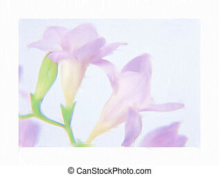 freesia watercolor - hand painted mauve freesia watercolor...