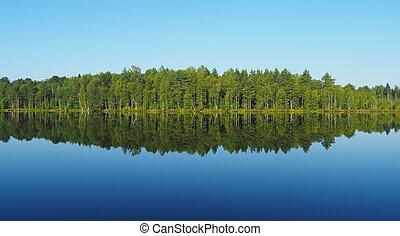 forest lake karelia