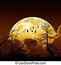 Full moon - Night sky with yellow full moon, stars, flock of...