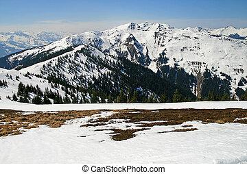 attraente, fresco, vista, neve, Alpino