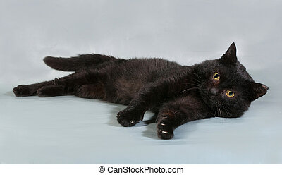 Black cat with yellow eyes lying on gray