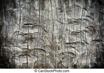 Background of carved tree with vignette