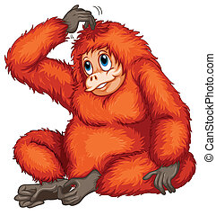 Orangutan - Illustration of an orangutan