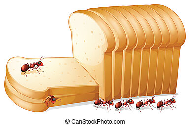 Bread and ants - Illustration of ants on bread