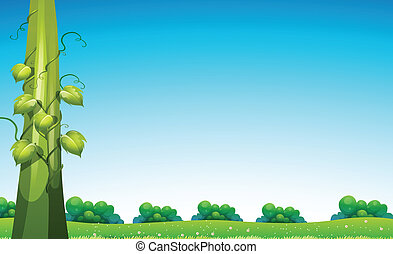 Beanstalk in field - Illustration of a view with beanstalk