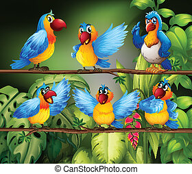 Parrots - Illustration of many parrots in the jungle