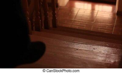 shadow of walking man
