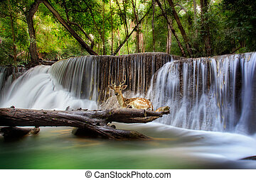 Huai mae kamin Waterfall - Top levelof Erawan Waterfall in...