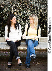College students - A shot of two college students having a...