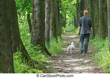 walking - man and dog walking on park