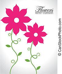 Flowers design over white background, vector illustration