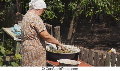 Old woman peasant - preparation of pet food. very old woman...