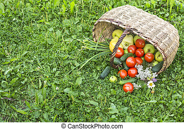 Harvest. Basket full of fruits and vegetables scattered in a grass in garden.