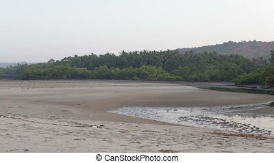beach with water in the hills and jungles close in the early...