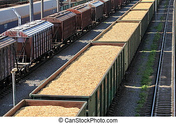 rail cars loaded with wood chip - train yard full of freight...