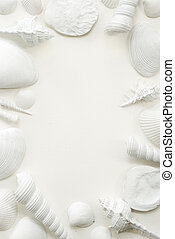 White Seashell Frame Background - White seashells presented...