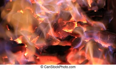 Beautiful real fire flame