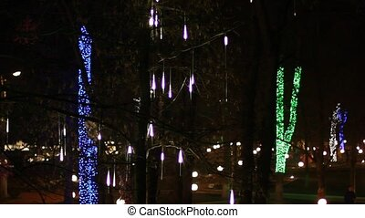 christmas decoration on night trees in park