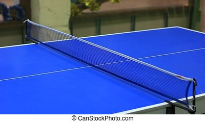 Playing table tennis - ping-pong