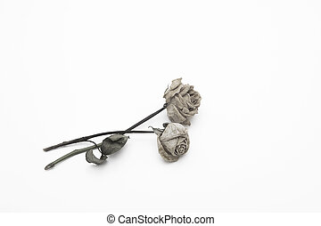 dried rose depicted on a white background.