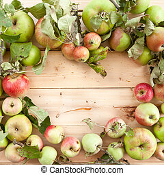 Various organic apples - Various sorts of organic apples on...