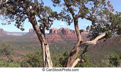 Cathedral Rock Landscape Sedona