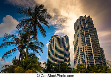 Palm trees and highrises at South Beach, Miami, Florida.