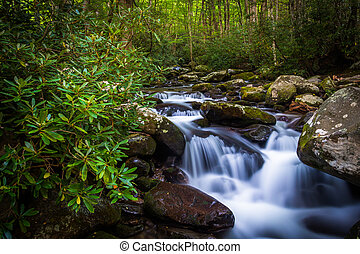 Cascades on Roaring Fork, in Great Smoky Mountains National...