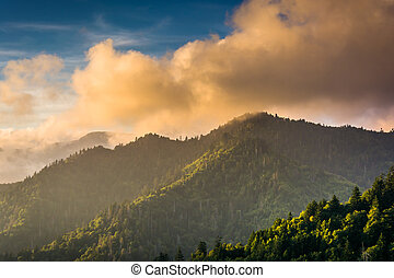 Evening light on the Smokies, seen from an overlook on...