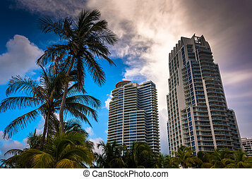 Palm trees and highrises at South Beach, Miami, Florida. -...