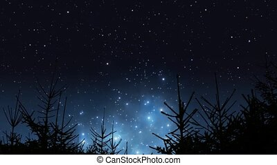 Pleiades rising over the forest - Timelapse of beautiful...