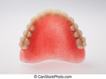 An upper denture on white