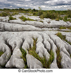 Burren in County Clare, Ireland