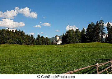 Medieval castle among lush green meadows in Austria -...