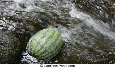 Watermelon in fast stream - Watermelon cooling in fast...