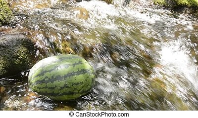 Watermelon in shining brook - Watermelon cooling in fast...