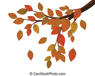 Fall Leaves on Branch - Tree branch with colorful falling...