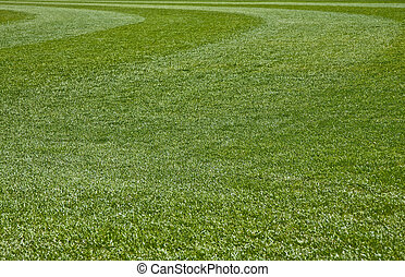 Grass Field - Fresh Cut green grass on a new baseball field