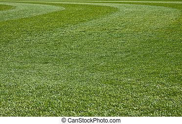 Grass Field - Fresh Cut green grass on a new baseball field