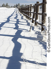Shadows In The Snow - Low perspective shot of the shadows...