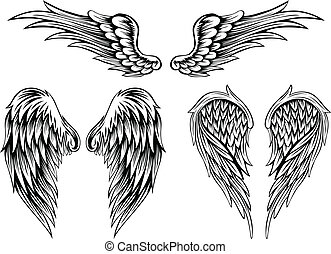 wings - Abstract vector illustration wings set