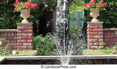 fountain in the rose garden - Fountain in the rose garden...