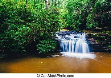 Waterfall on Carrick Creek, at Table Rock State Park, South...