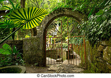 iron gate on junge path - iron gate slightly open on a...