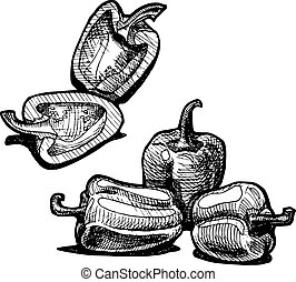 paprika - Vector illustration of a paprika stylized as...